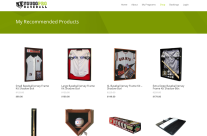 UGoProBaseball.com E-commerce Site